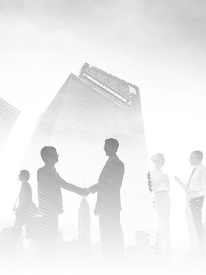 Vizija in poslanstvo - kakovostno računovodstvo